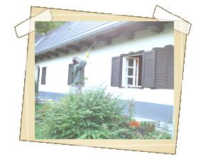 Ošetření těchto trámů venku, (prochází stěnou zevnitř) aby se zabránilo dalším náletům brouka